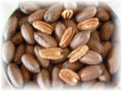 buy pecans online – Find Wholesale Pecan
